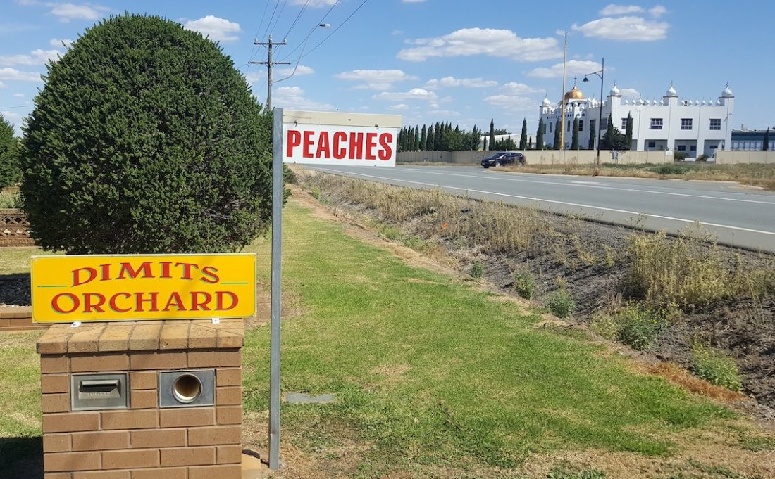 Dimits orchard and Sikh temple